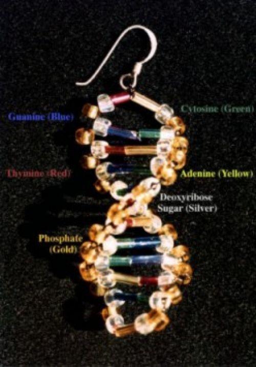 Pendientes (en Andalucía, zarcillos) ADN.  Si das clase de bioquímica y llevas estos pendientes el día que expliques la molécula de ADN darás el golpe   8o)  http://www.indiana.edu/~ensiweb/connections/genetics/beadproject/tpage.html