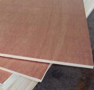 Red Wood Faced Plywood Bintangor Faced Plywood Xt C China Red Bintangor Faced Plywood Xuteng Plywood Manufactory Wood