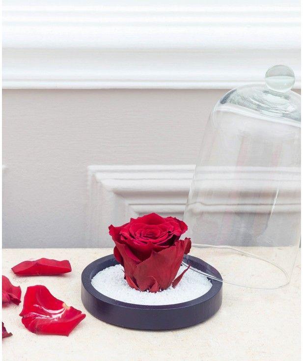 Rose Eternelle Rouge Sous Cloche De Verre Caprice De Fleurs Esprit