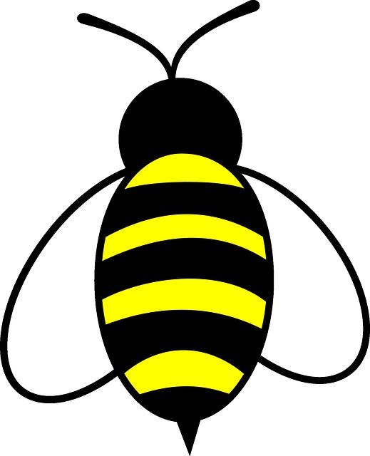 free image on pixabay honey bee bug insect buzz outlines rh pinterest co uk free clipart honey bee hives Honey Bee Clip Art 100% Free