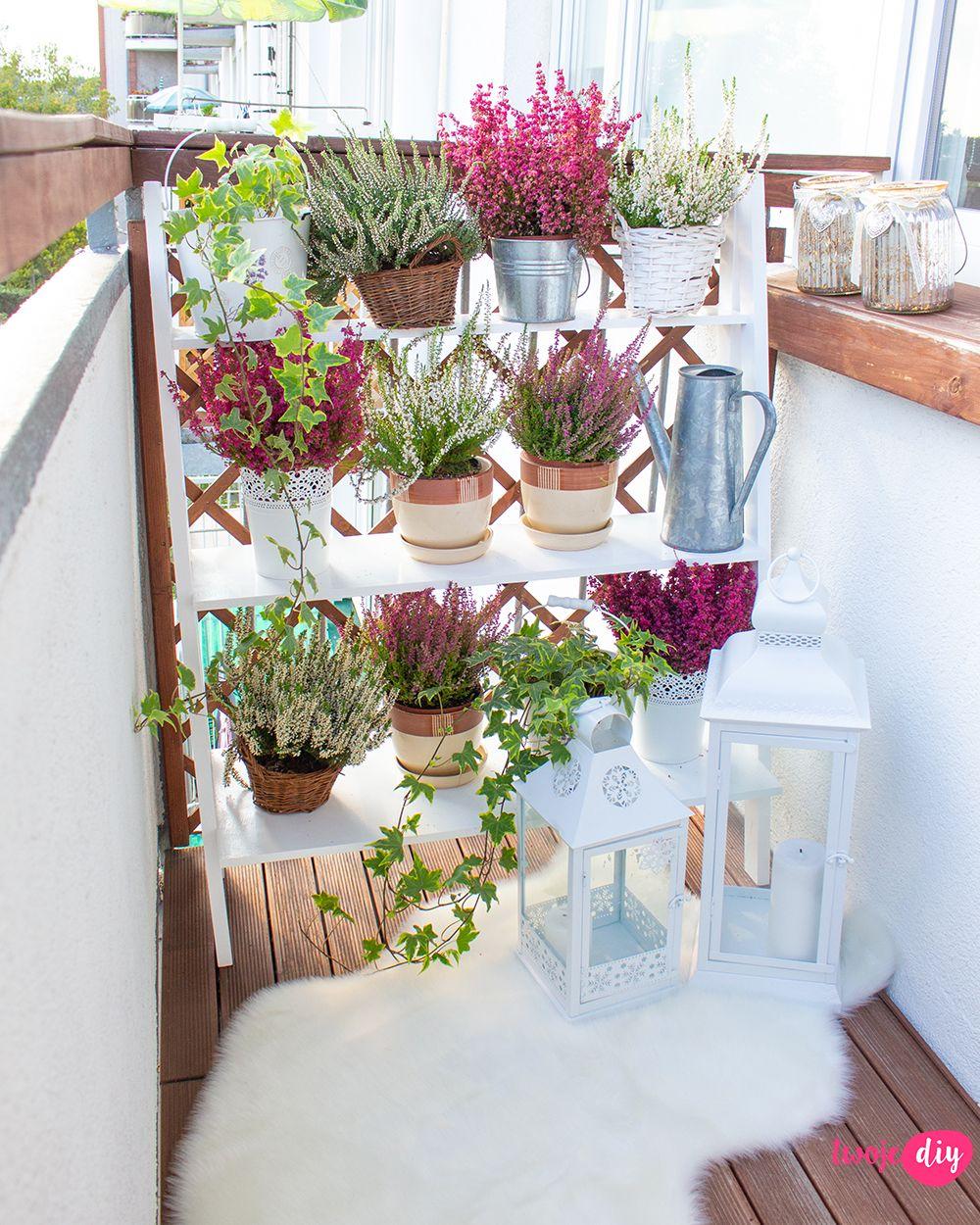 Polka Na Balkon Diy Prowadze Pytanie Na Sniadanie Extra Odcinek 13 Twoje Diy Balcony Flowers Balcony Decor Garden Decor