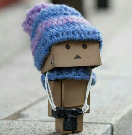 Danbo's Winter