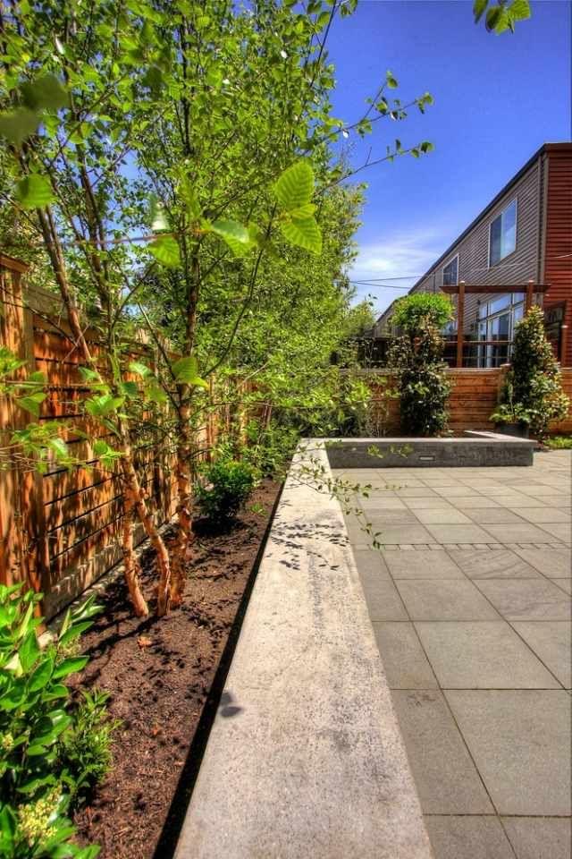 Garten Schutz-unerwünschte Geräusche-Sämlinge Betonmauer-niedrig - verputzte beton mauer bilder gartengestaltung