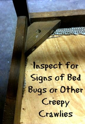 3 Easy Steps To Keep Bed Bugs Out Of Your Up Cycle Project Bed