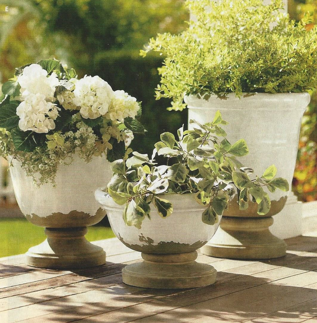 Pottery Barn planters that are very expensive but very beautiful.