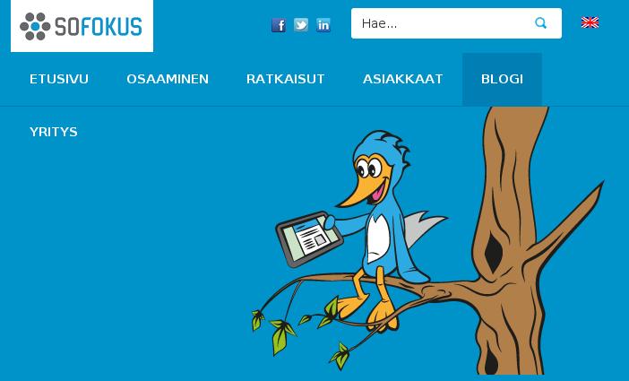 DUUNI: Ohjelmistokehittäjä @ Sofokus. Web-devausta.