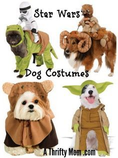 Star Wars Dog Costume Storm Trooper Ewok Yoda Bantha Diy