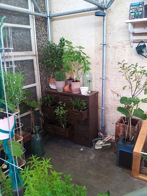 WB2013. 101 WOONIDEEËN. Garden