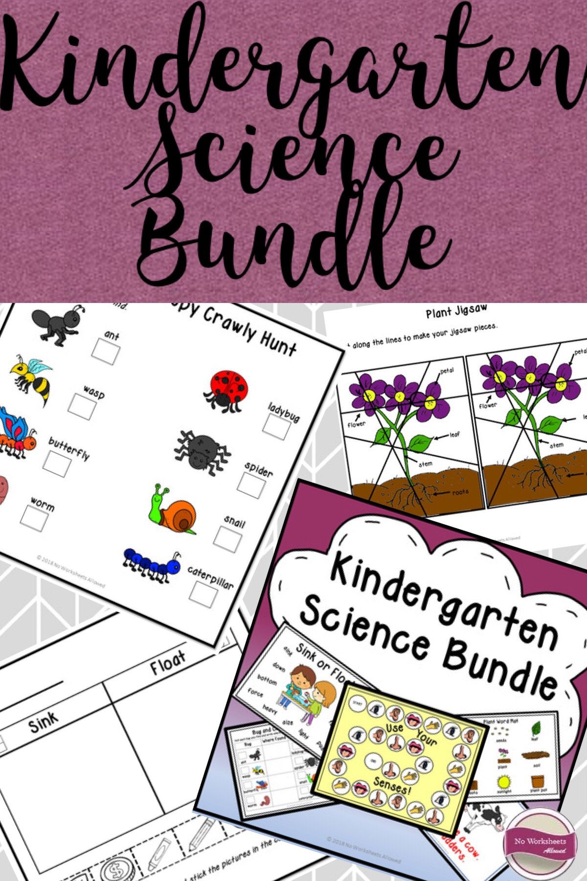 Science Activities Investigations And Printables Bundle