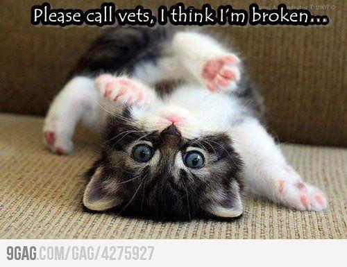 I think I'm broken...