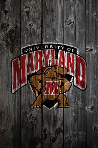 Maryland Terps Background Florida State Seminoles Florida State Seminoles Football Florida State