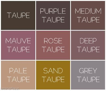 All Things Taupe Soft Summer Palette Soft Summer Colors Taupe