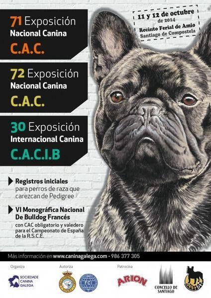 11 y 12 de octubre EXPOSICIÓN INTERNACIONAL CANINA DE GALICIA EN SANTIAGO DE COMPOSTELA
