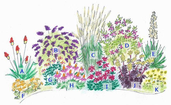 The gallery for flower garden designs for full sun for Flower garden layout examples