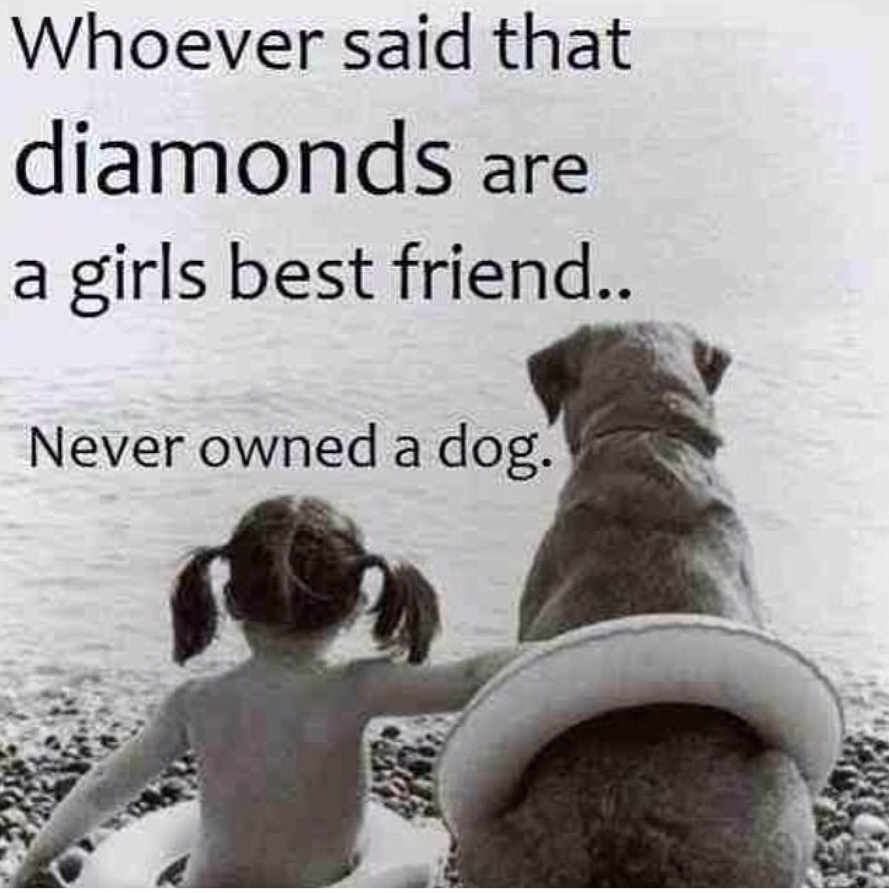 Quotes About Dogs Dogs #life #friends #quotes  Furry Friends  Pinterest  Dog Life .