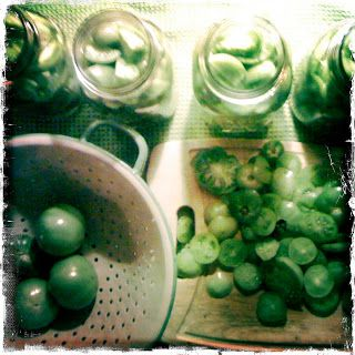Pickled green tomatos