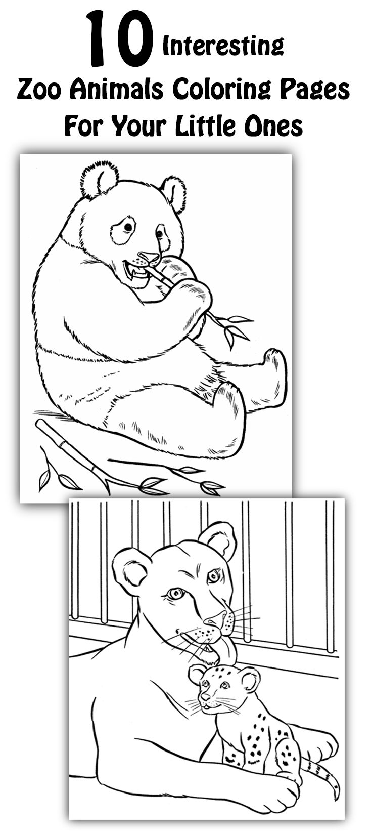 Top 25 Free Printable Zoo Coloring Pages Online | Pinterest