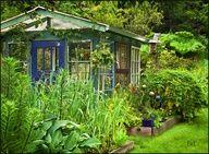 gorgeous #garden #greenhouse # windows