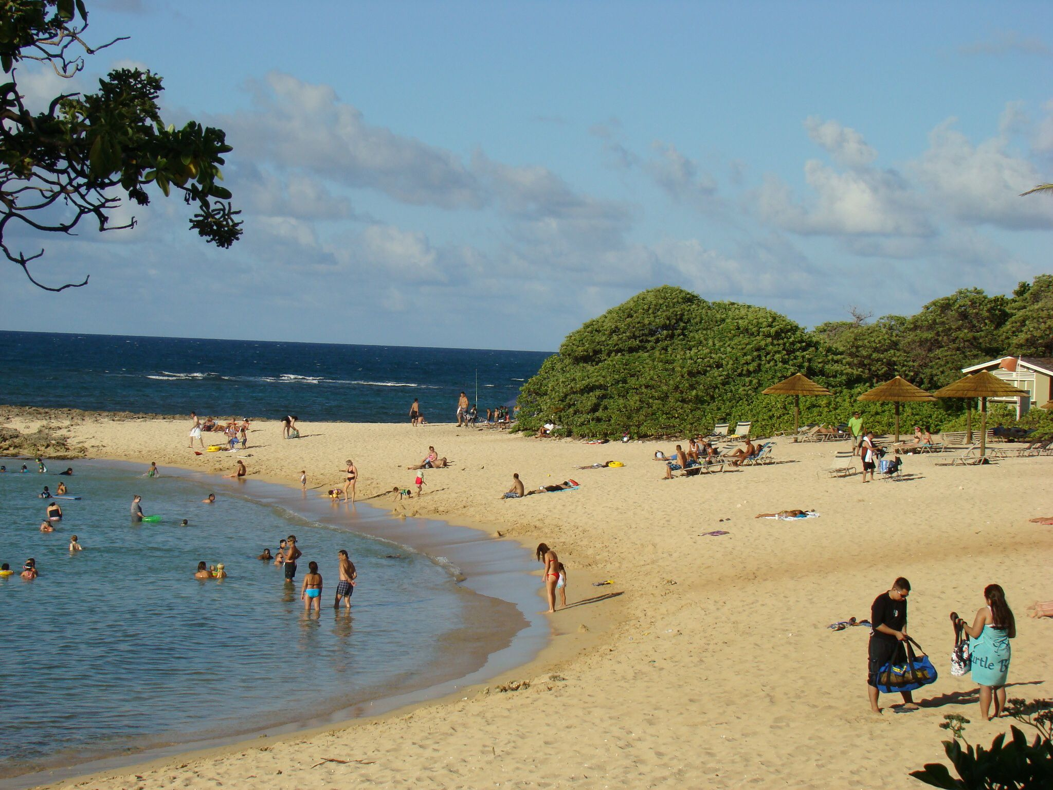 beautiful beach on kuilima cove turtle bay resort