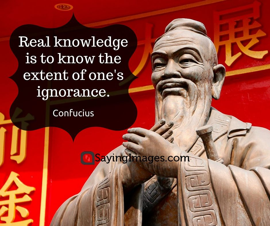 30 Best Knowledge Quotes #sayingimages #Knowledge #quotes