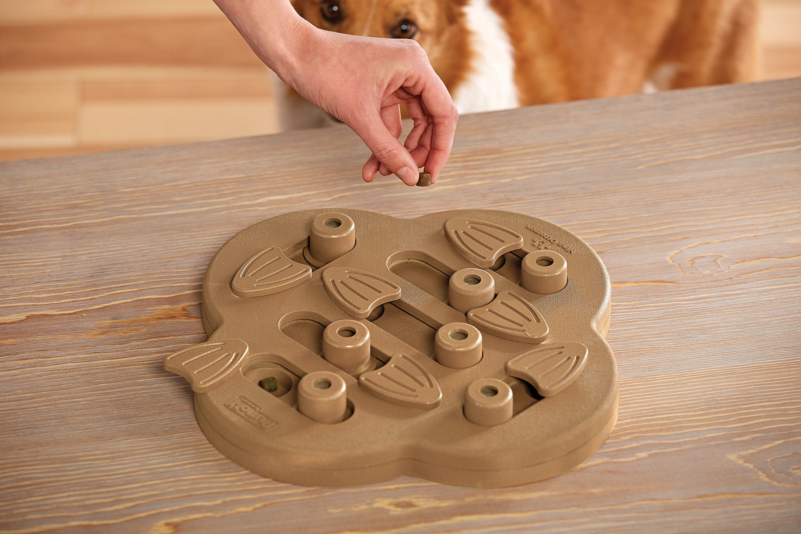 Nina Ottosson Outward Hound Puzzle Toy For Dogs A Stimulating