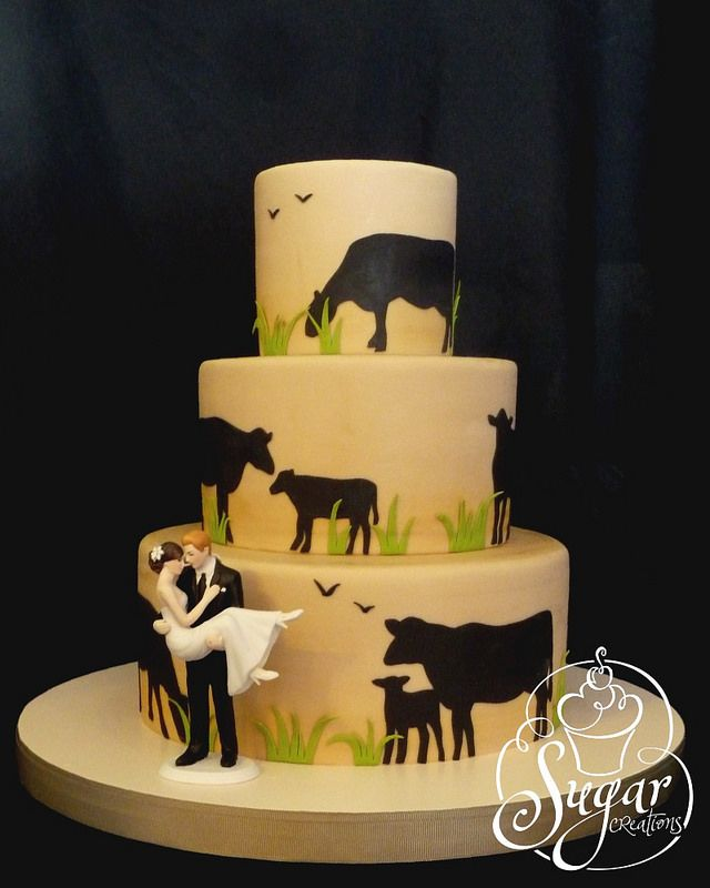 rancher\'s wedding cake | wedding cakes I like (non-traditional ...