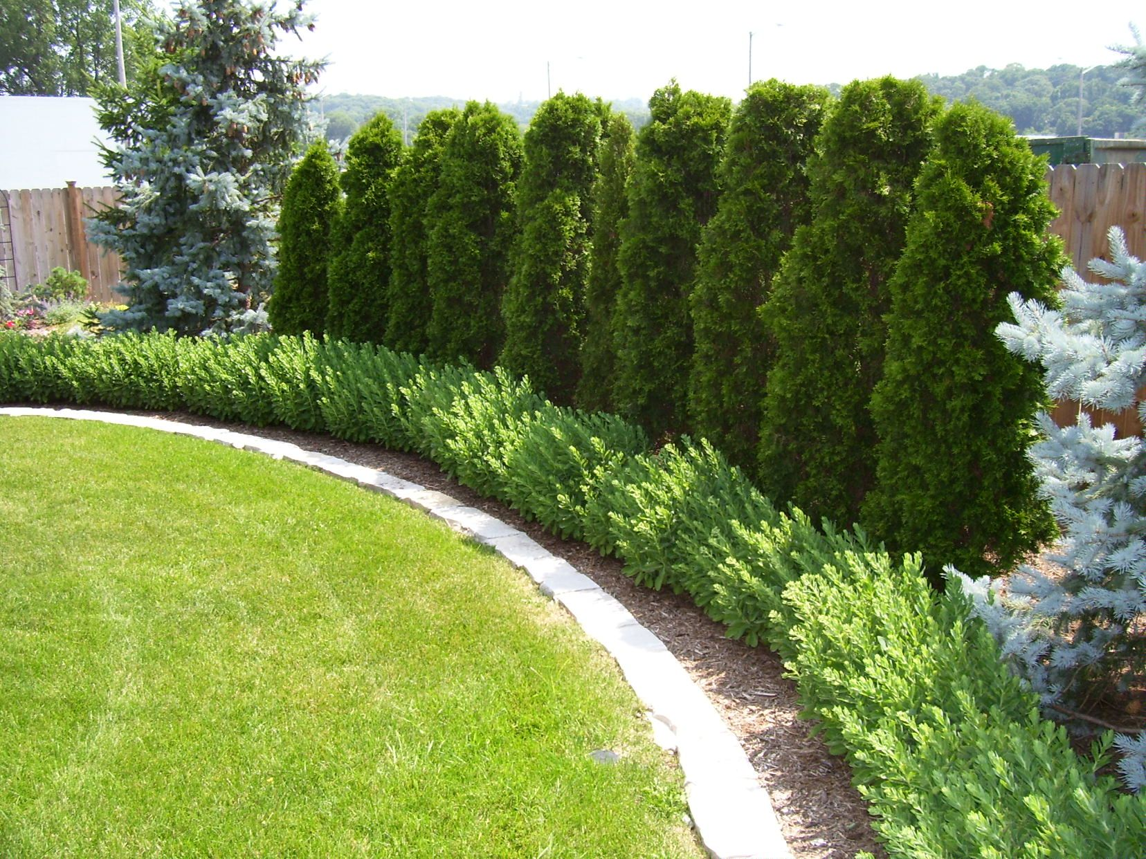 Landscape edging good idea for the backyard along the wall