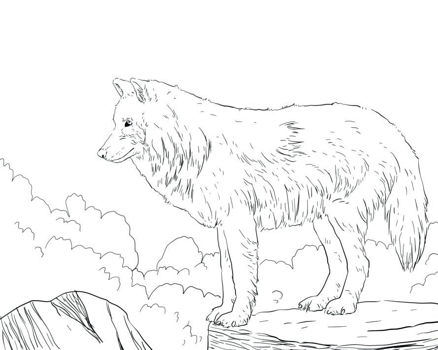 Wolf Coloring Pages For Adults Best Coloring Pages For Kids Animal Coloring Pages Dance Coloring Pages Horse Coloring Pages