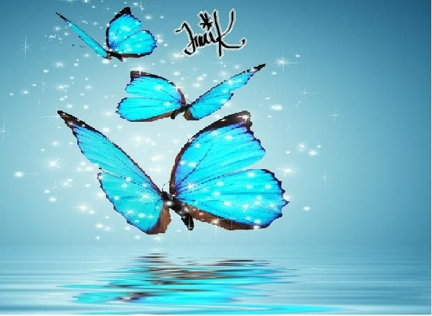 Spiritual Wave Traci K In 2021 Blue Butterfly Wallpaper Butterfly Wallpaper Iphone Butterfly Wallpaper