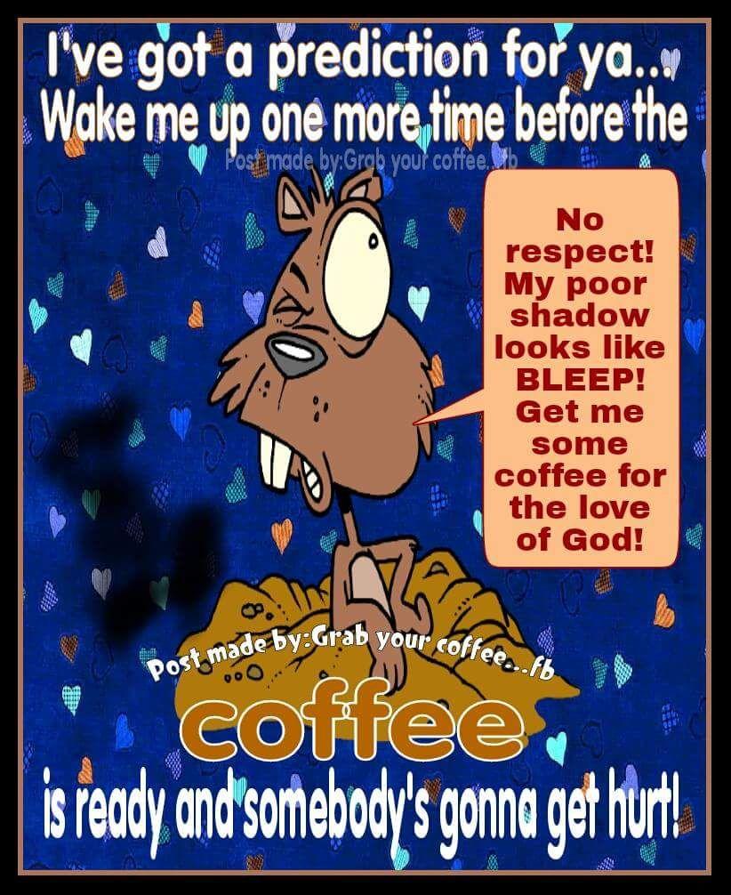 Cartoon Groundhog Meme Funny Coffee Quote Cartoon Quotes In 2019