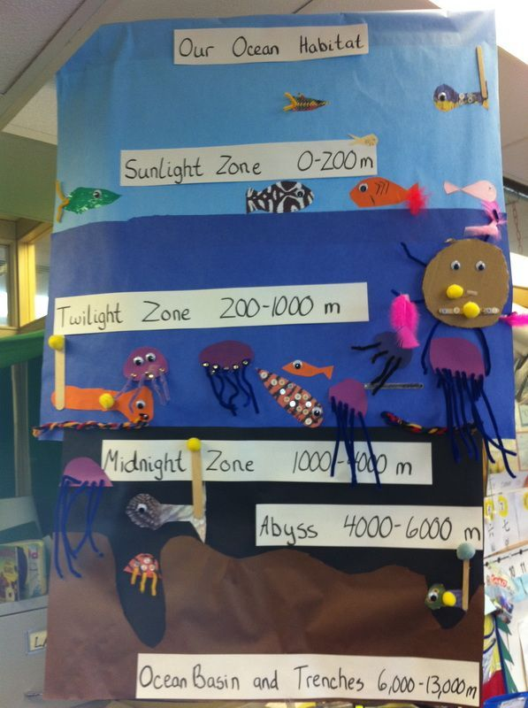 Ocean anchor chart plus this teacher has lots more in all areas ocean zones science bulletin board idea could related to library if kids read an article that describes the animal and recreate the image sciox Image collections