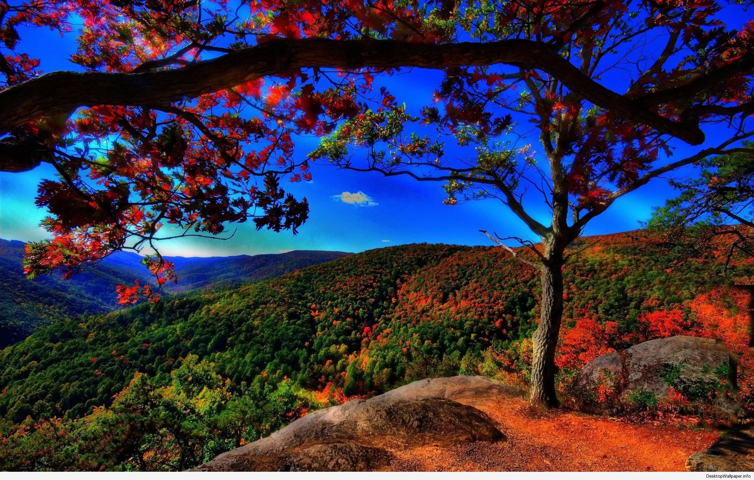 best scenery wallpaper - http://desktopwallpaper/best-scenery