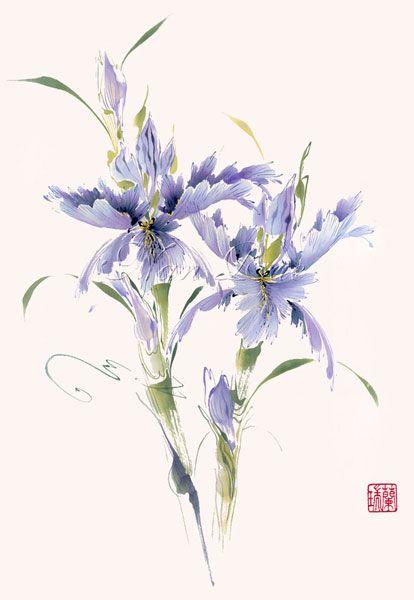 Oriental Asian Art Print Iris Flowers ink painting