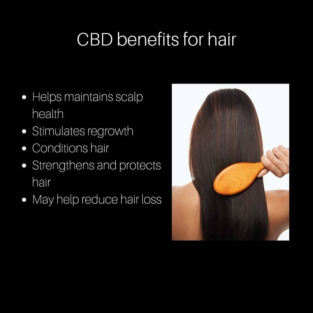 My Hair Used To Come Out So Much In The Shower After 3 Months Of Taking Cbd It No Longer Comes As Much Just A Hair Help Reduce Hair Loss Hair Strengthening