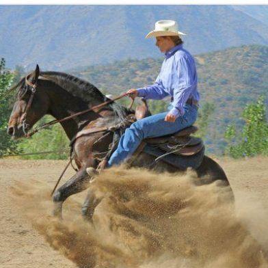 Reining barrel racing rodeo western ranch cowboy cowgirl