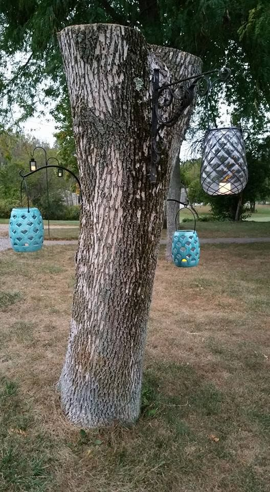 Decorating A Dead Tree Stump Lanterns Choose To Decorate That
