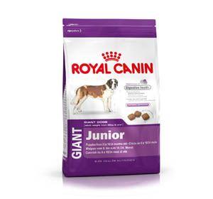 Royal Canin Giant Junior Dog Food 4 kg Dog Dry Food