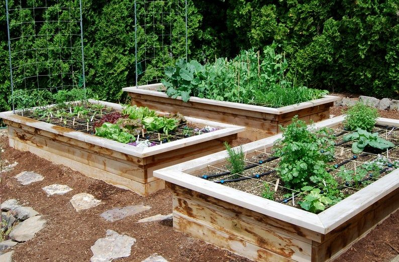 Build Your Own Raised Bed Frame with Seats (digital ...