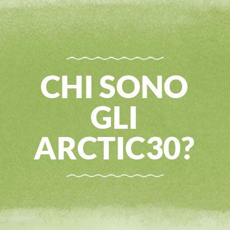 30 artisti per gli Arctic30