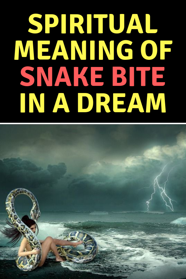 Spiritual Meaning of Snake Bite in a Dream   Spirituality