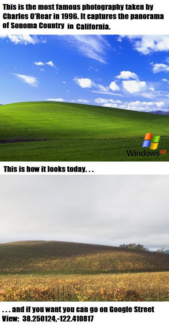 Windows XP Wallpaper Then vs. Now Geeky Things