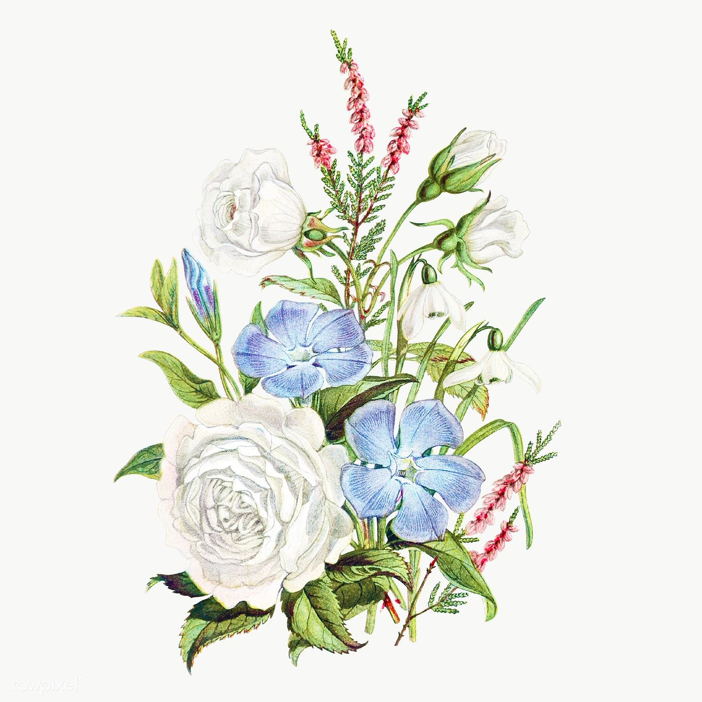 Download Premium Png Of Vintage Flower Bouquet Transparent Png 2098582 In 2020 Summer Flower Bouquet Flower Illustration Vintage Flowers