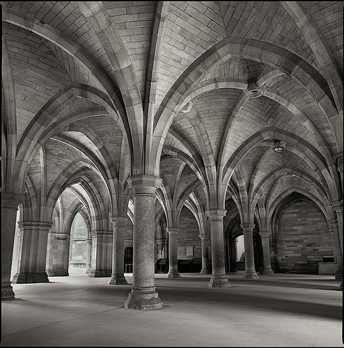Elegant Ribbed Groin Vaults Cloister Historic Buildings Cool