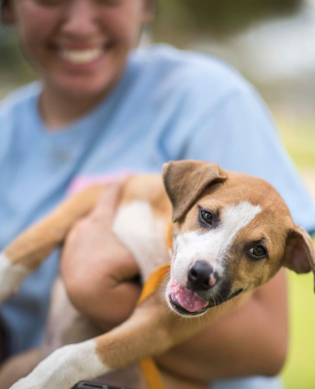 Petco Foundation On Instagram Our National Adoption Weekend Takes Place This Weekend At Petco Join Us Saturday April 6 Su April 7 Sunday Adoption