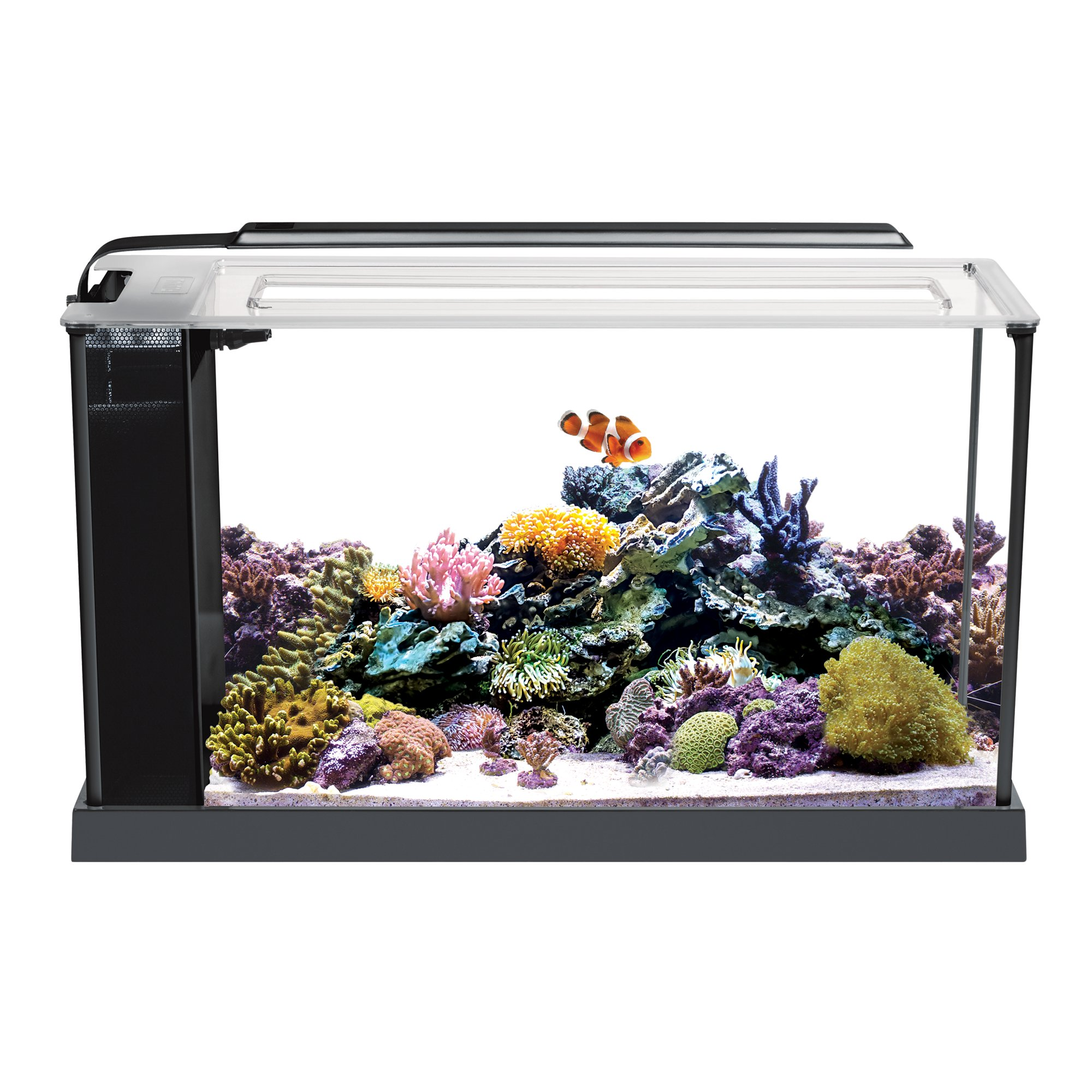 Fluval EVO V Marine Aquarium Kit