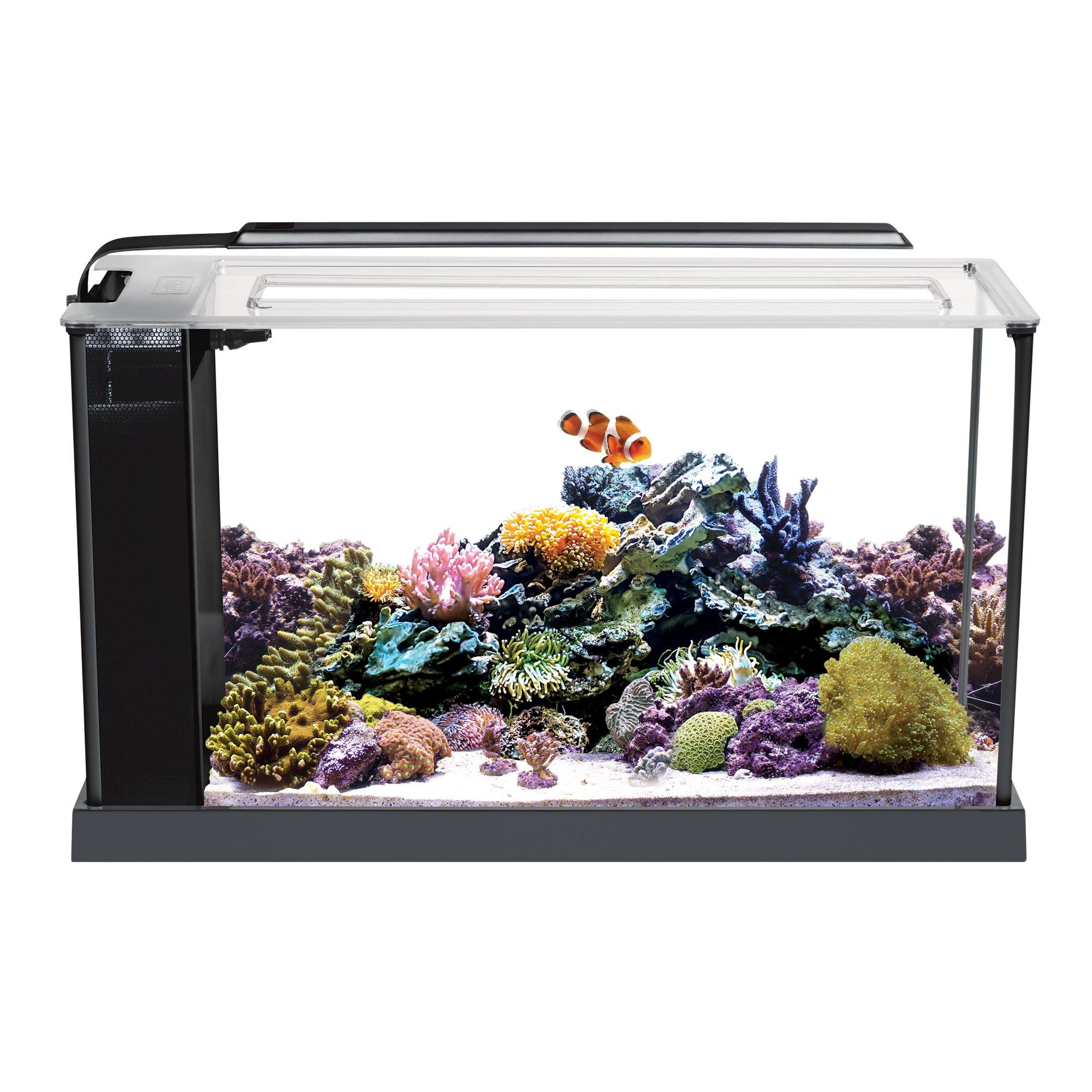 Fluval 5 Gallon Evo V Marine Aquarium Kit Aquascaping Et Aquarium