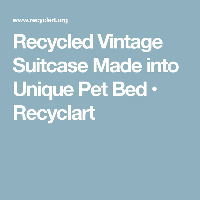 Recycled Vintage Suitcase Made into Unique Pet Bed • Recyclart