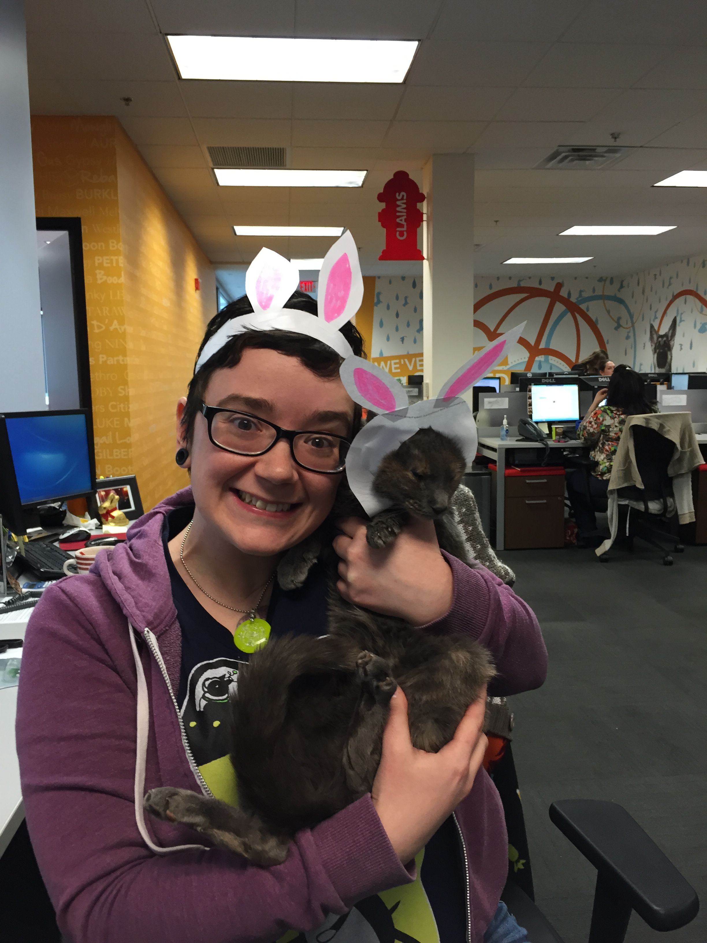 The Friday Before Easter Always Makes Us Eggstra Hoppy In The Petplan Office Kitties Too Growing Companies Pets Pet Insurance