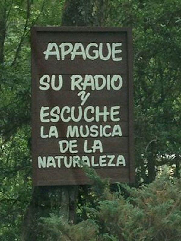 Apague su radio y escuche la música de la naturaleza.