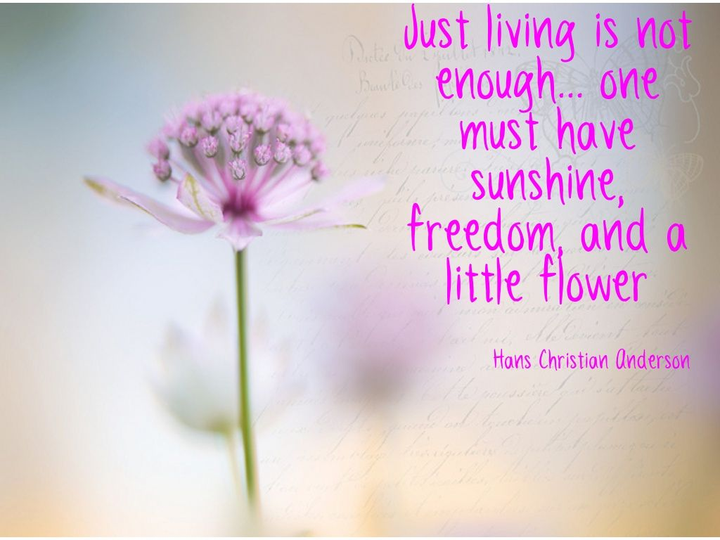 Just living is not enough...
